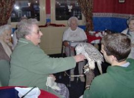 residents enjoying birds of prey visit